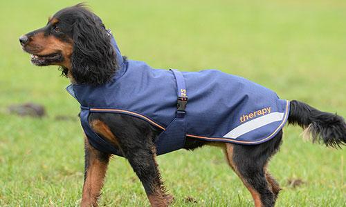 Dog Rugs